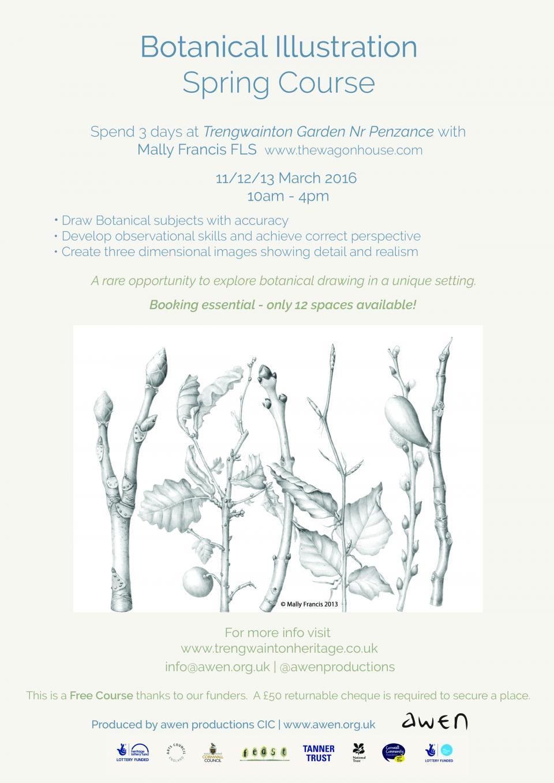 Botanical illustration Spring course
