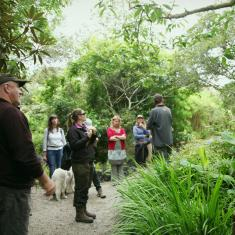 The group venturing out into the garden, Trengwainton.