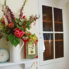 Summer flowers at Trengwainton's 'Gardener's Cottage', now the bookshop.
