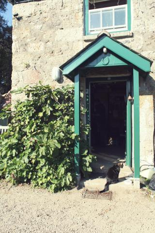 The Bothy, Trengwainton