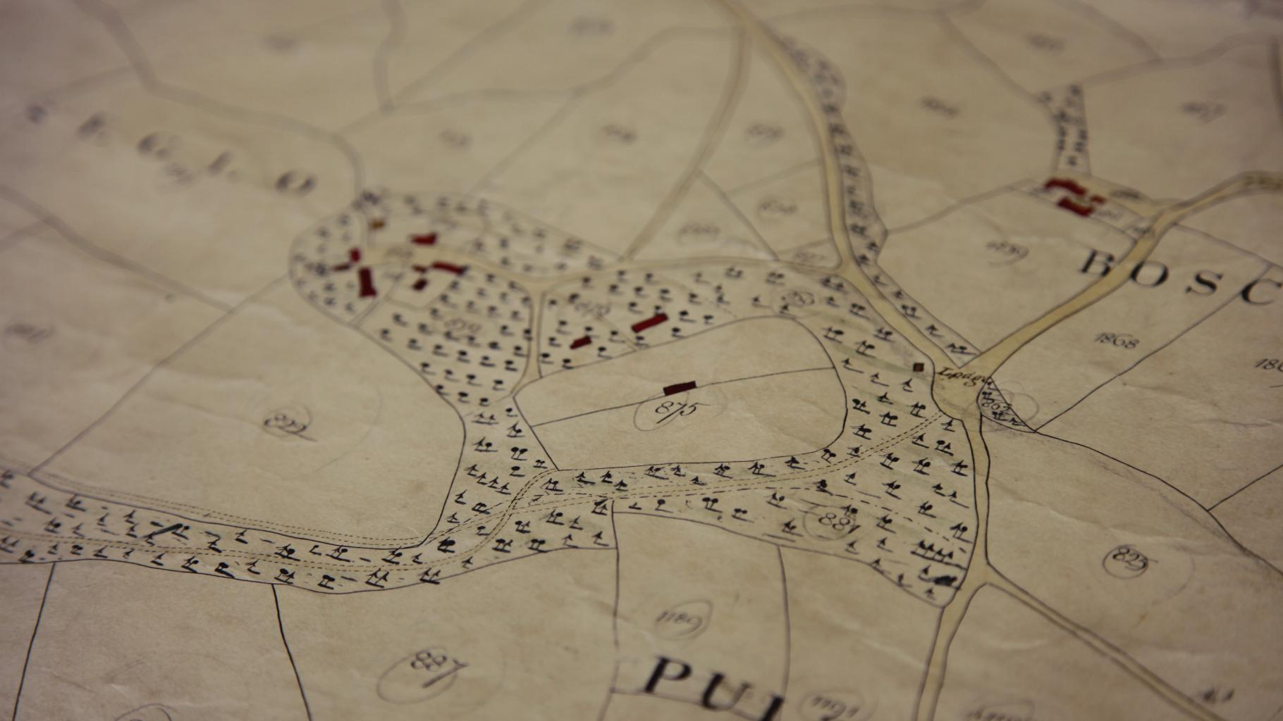 1840 Tithe Map of Trengwainton, Madron near Penzance, © Cornwall Records Office