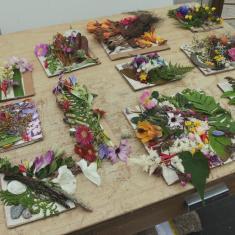 Jane Bailey Workshop, Trengwainton Heritage Project