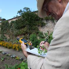 Keith Spurgin collecting specimens, Trengwainton Garden