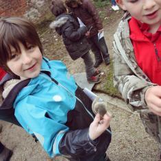 Furry bud cover protecting Magnolia flowers, Trythall infants School workshops, Trengwainton Garden