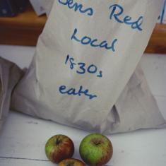 Ben's red local 1830's apple