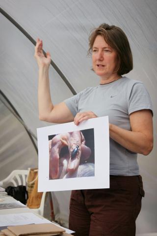 Dr. Jane Bailey. Photo © Barbara Santi.